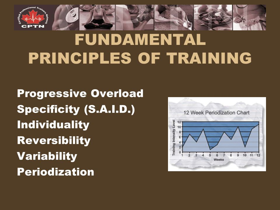 FUNDAMENTAL PRINCIPLES OF TRAINING