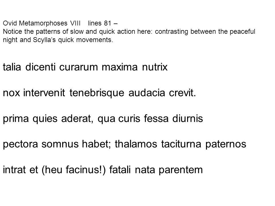 talia dicenti curarum maxima nutrix