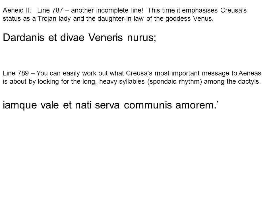 Dardanis et divae Veneris nurus;