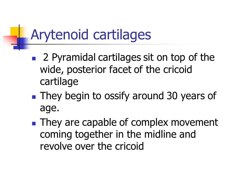 Arytenoid cartilages 2 Pyramidal cartilages sit on top of the wide, posterior facet of the cricoid cartilage.
