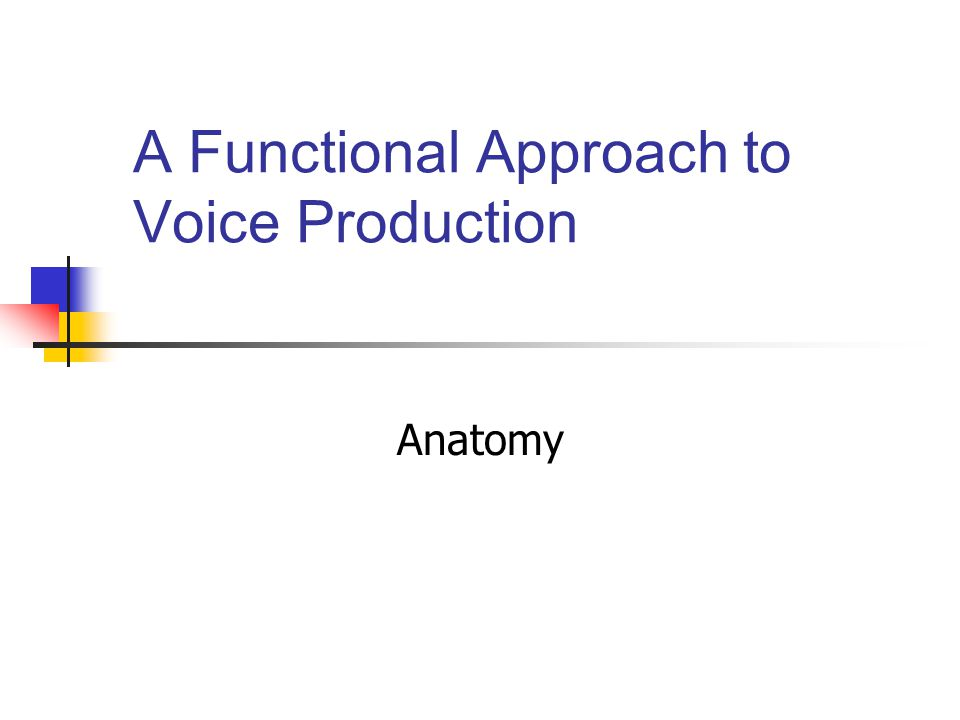 A Functional Approach to Voice Production