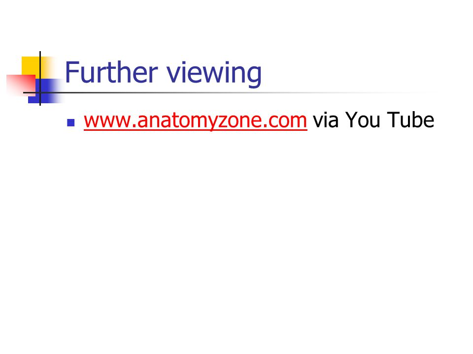 Further viewing www.anatomyzone.com via You Tube