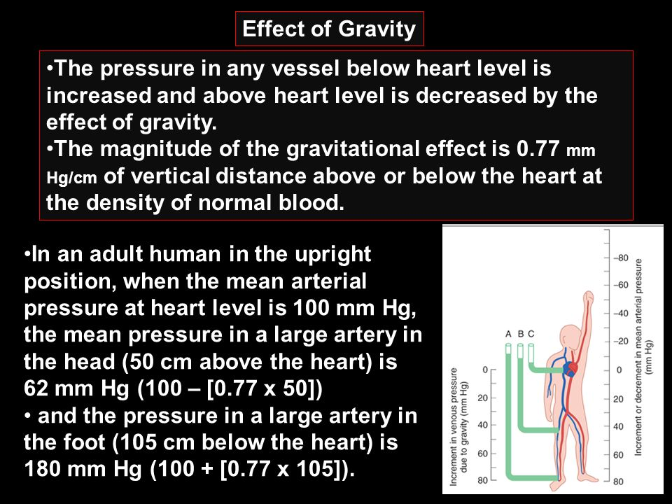 Effect of Gravity The pressure in any vessel below heart level is increased and above heart level is decreased by the effect of gravity.