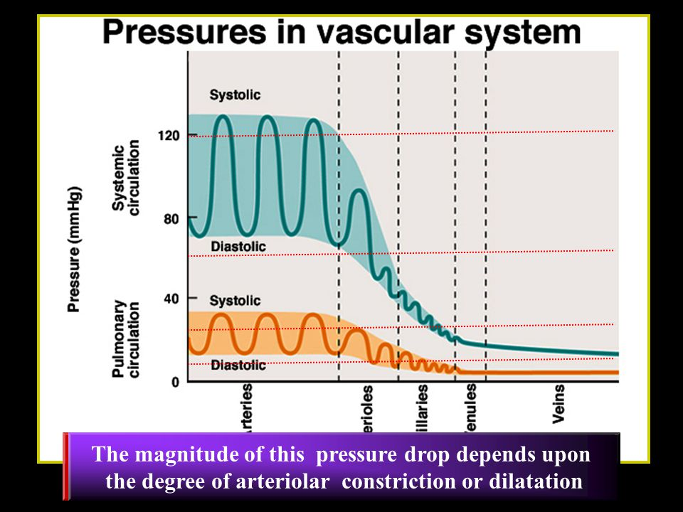 The pressure falls rapidly in the arterioles