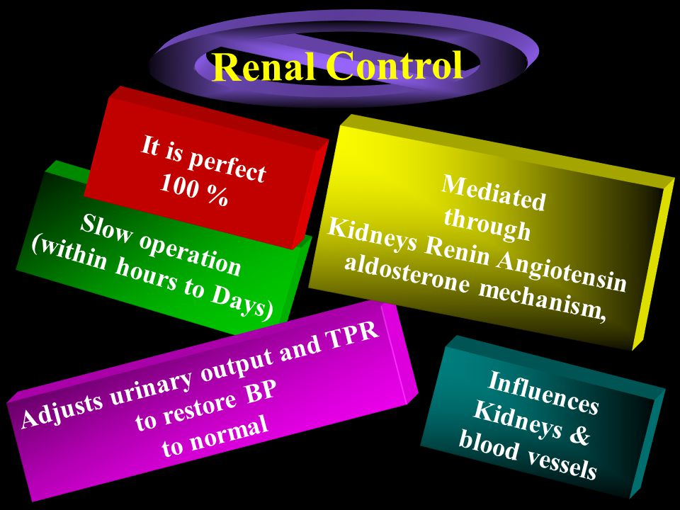 Renal Control It is perfect 100 % Mediated through