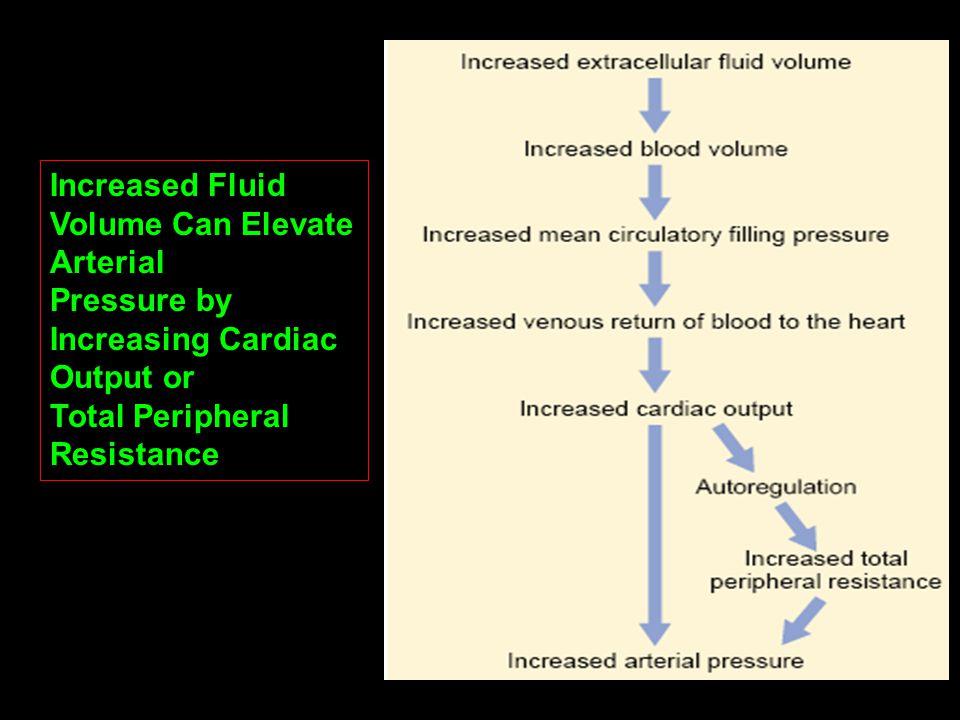 Increased Fluid Volume Can Elevate Arterial