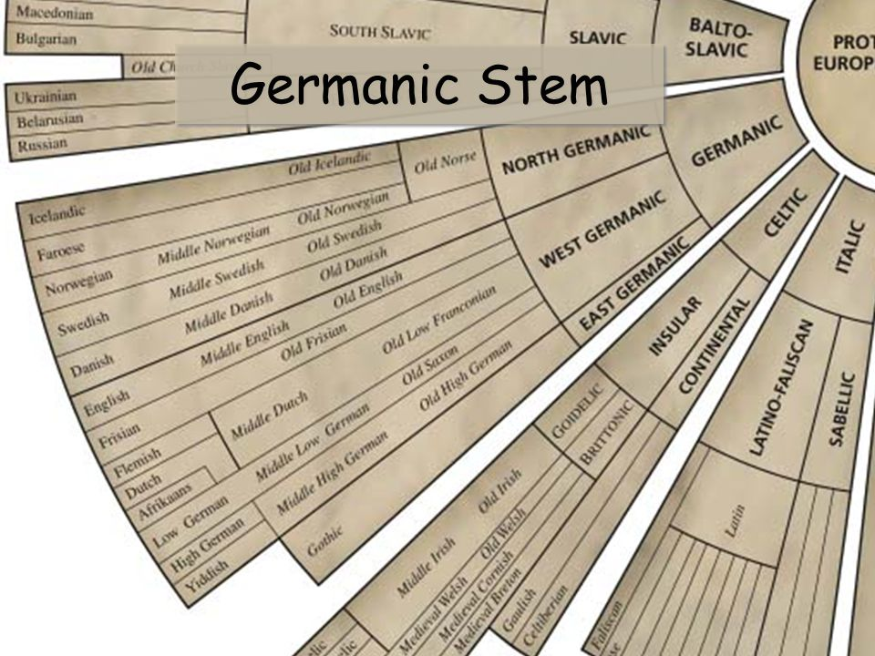 Germanic Stem