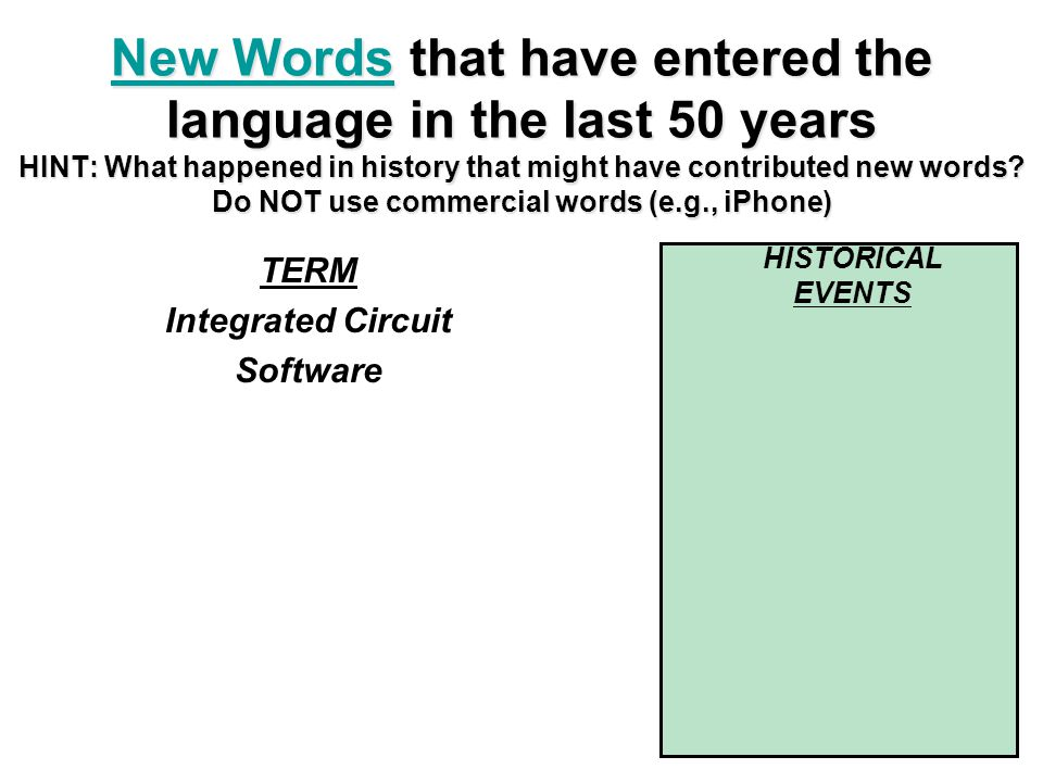 TERM Integrated Circuit Software