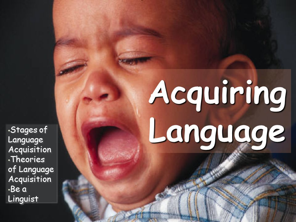 Acquiring Language Stages of Language Acquisition