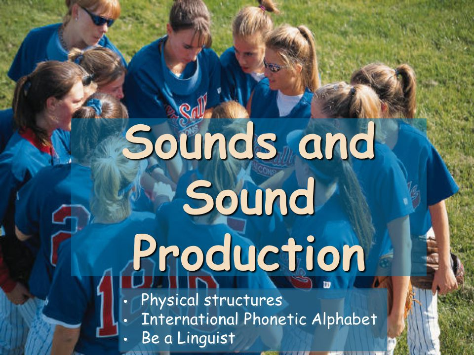 Sounds and Sound Production