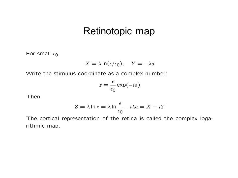 Retinotopic map