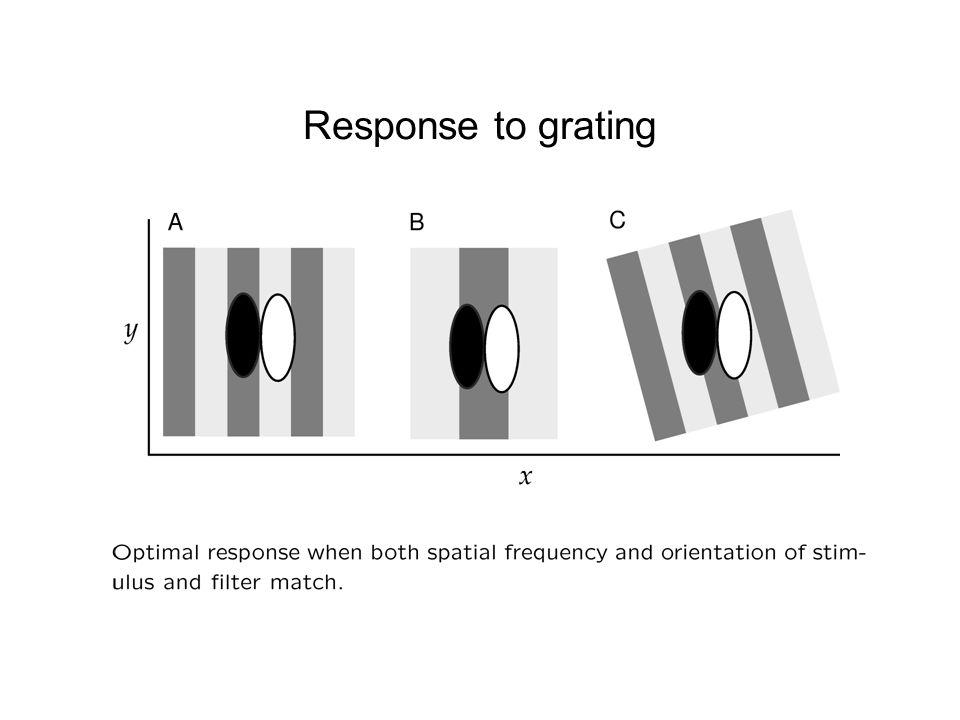 Response to grating