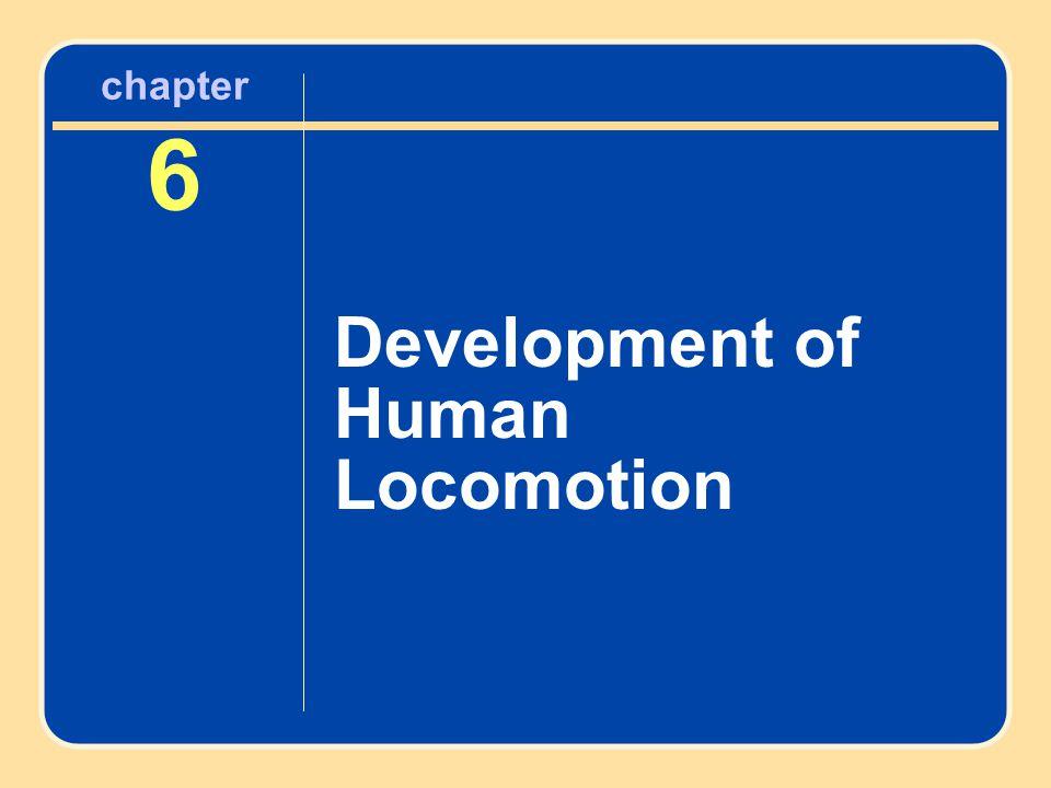 Development of Human Locomotion