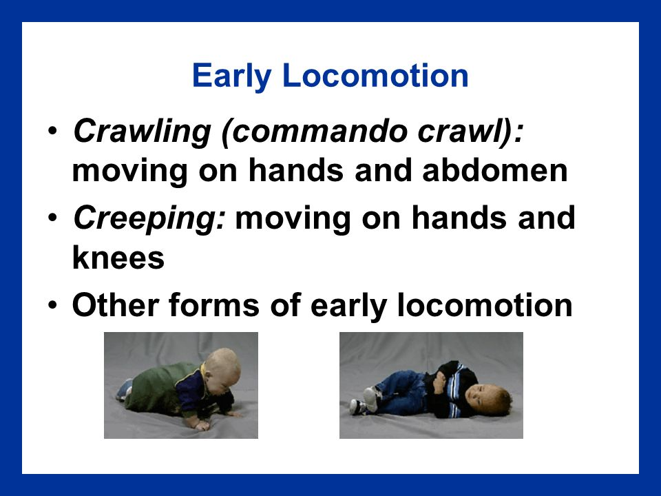 Early Locomotion Crawling (commando crawl): moving on hands and abdomen. Creeping: moving on hands and knees.