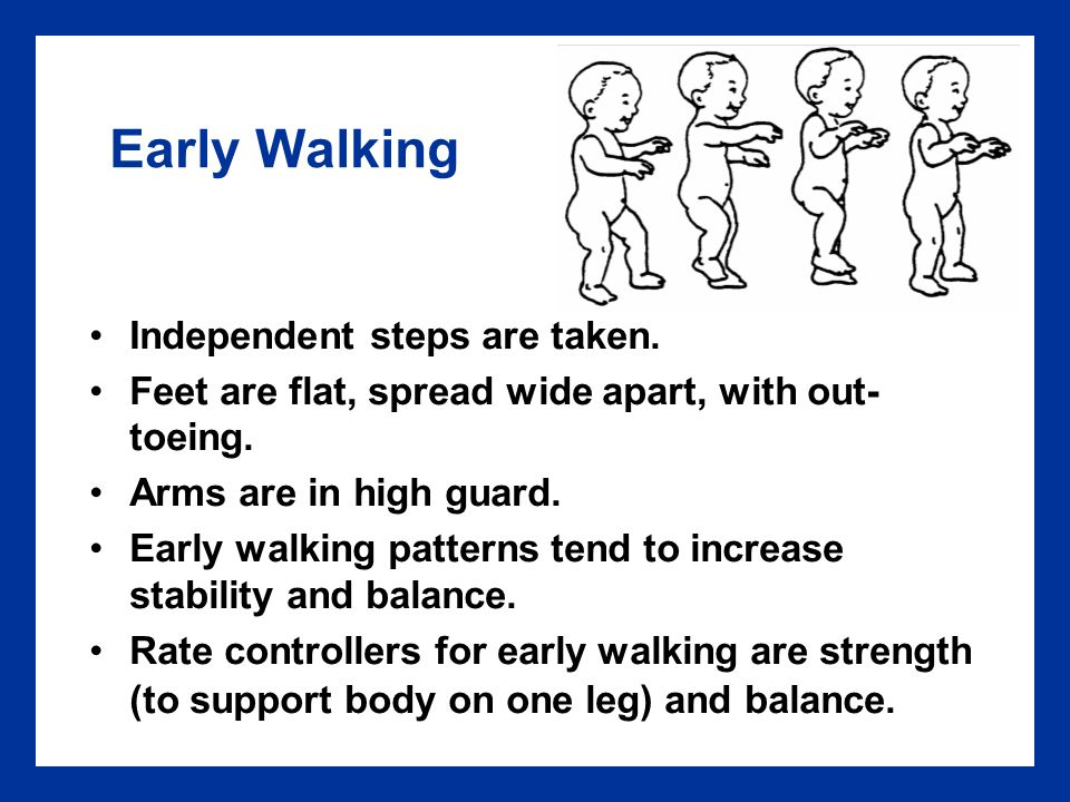 Early Walking Independent steps are taken.