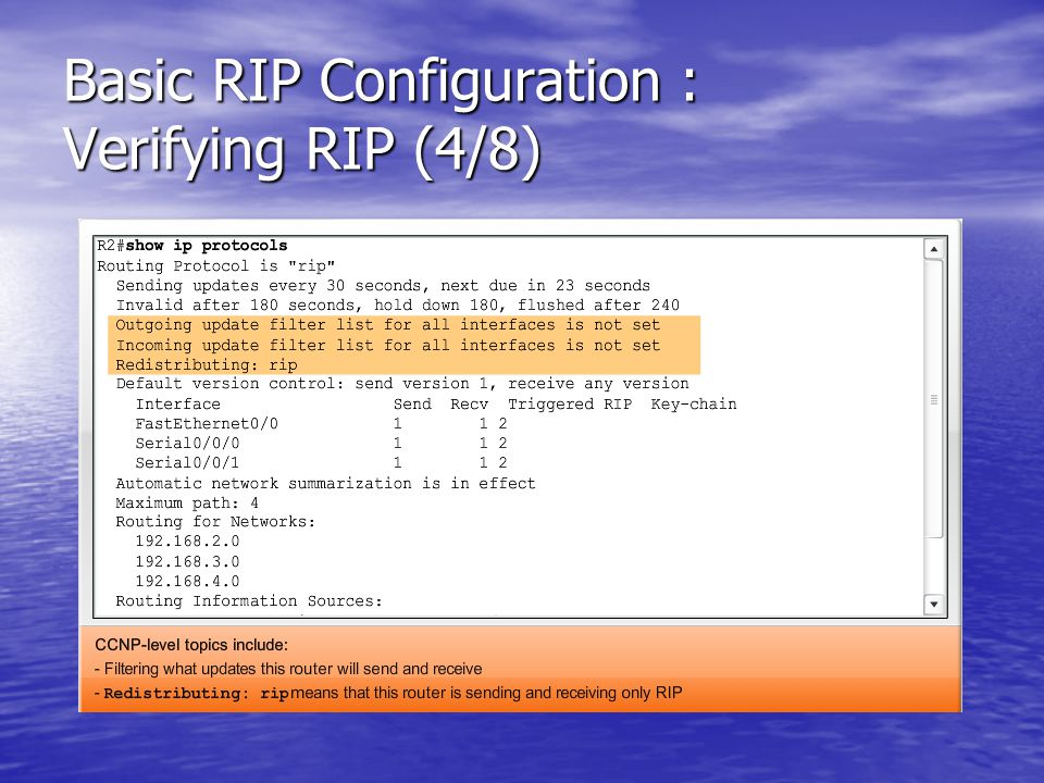 Basic RIP Configuration : Verifying RIP (4/8)