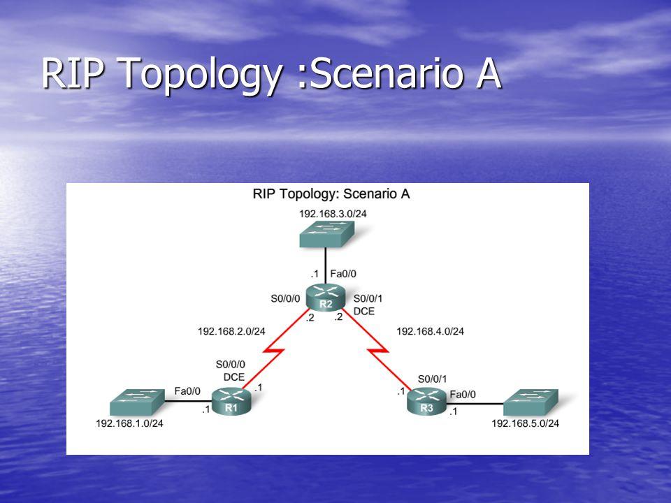 RIP Topology :Scenario A