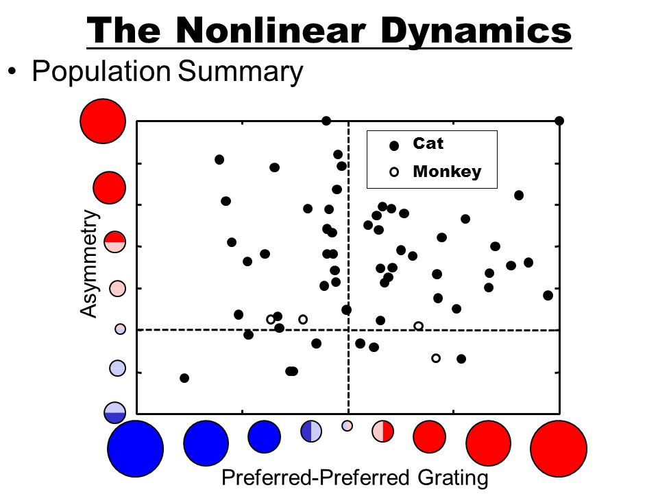 The Nonlinear Dynamics