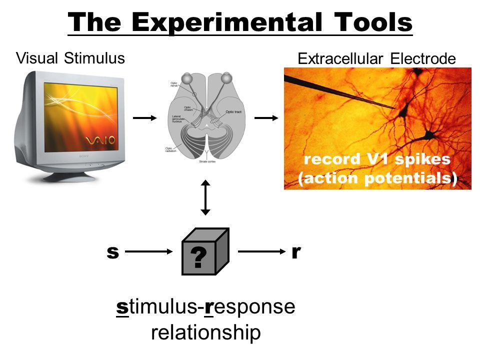 The Experimental Tools