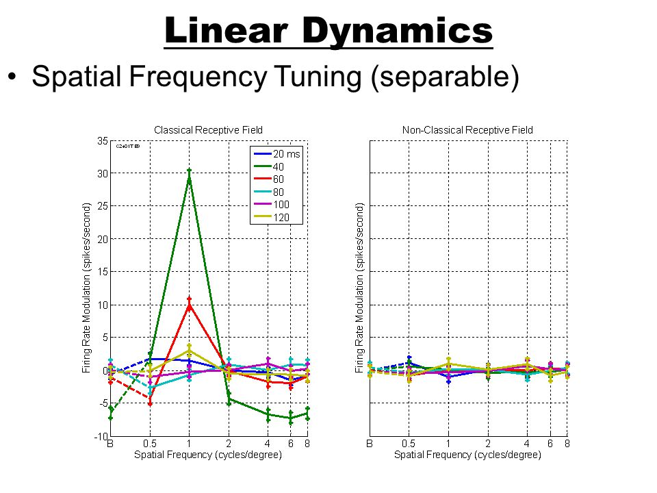 Linear Dynamics Spatial Frequency Tuning (separable)