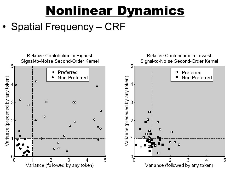 Nonlinear Dynamics Spatial Frequency – CRF