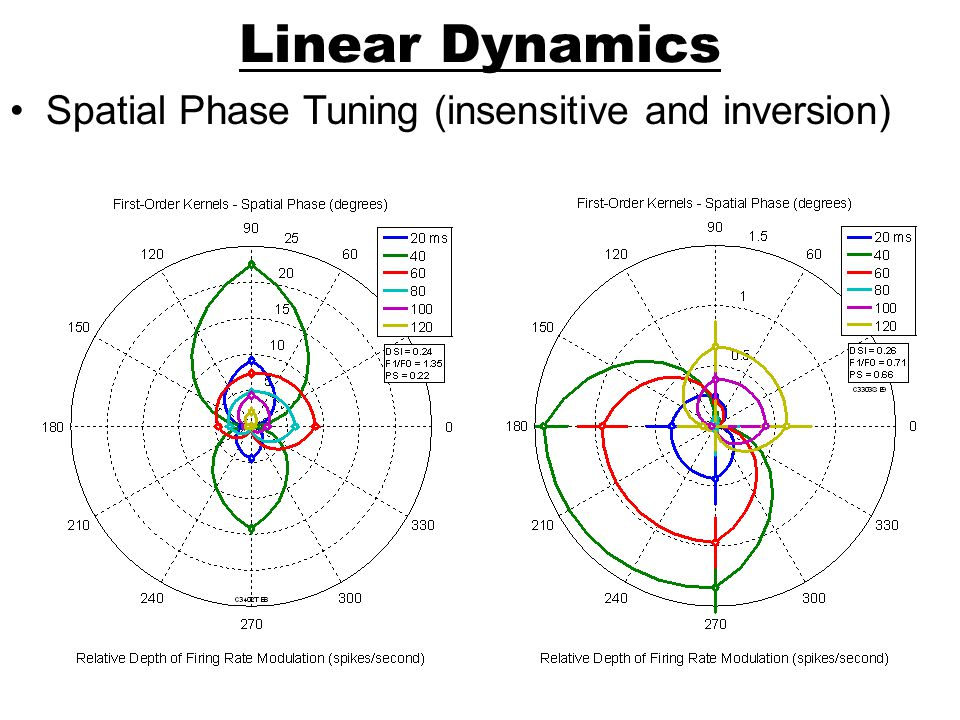 Linear Dynamics Spatial Phase Tuning (insensitive and inversion)