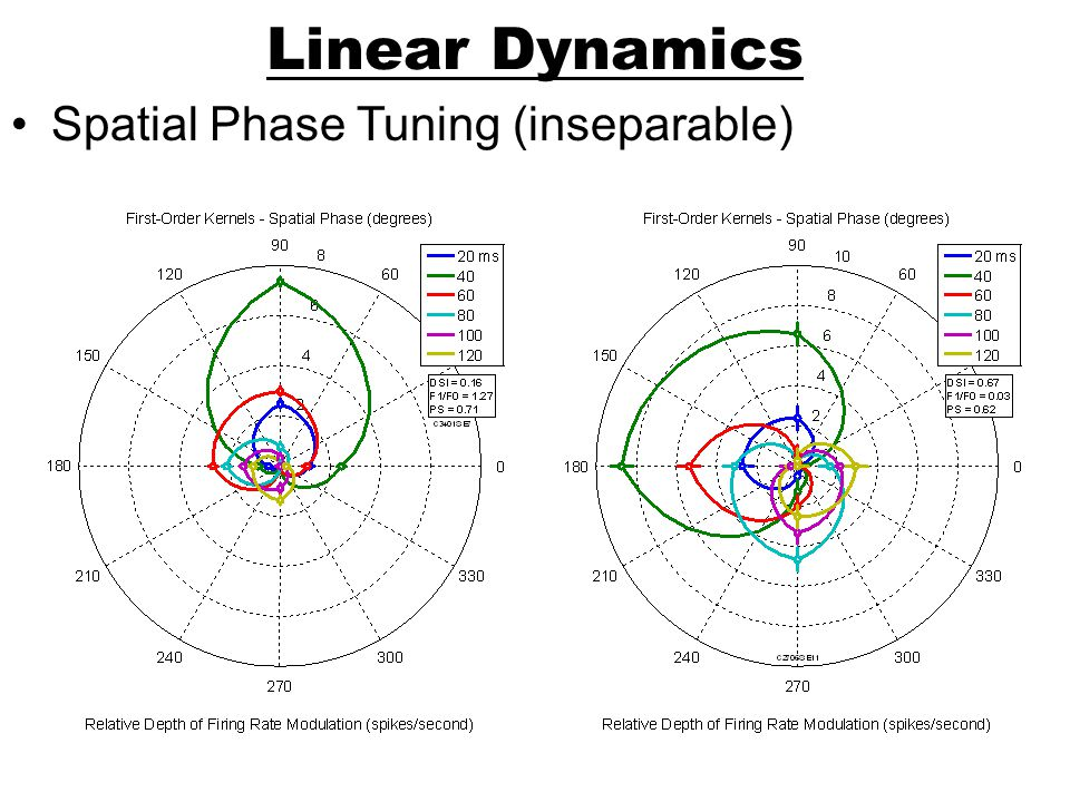 Linear Dynamics Spatial Phase Tuning (inseparable)