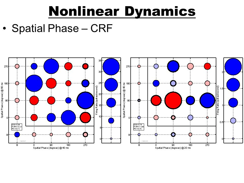 Nonlinear Dynamics Spatial Phase – CRF