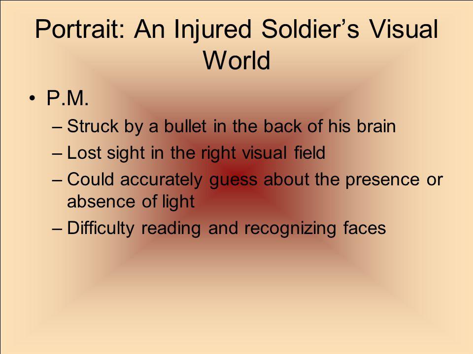 Portrait: An Injured Soldier's Visual World