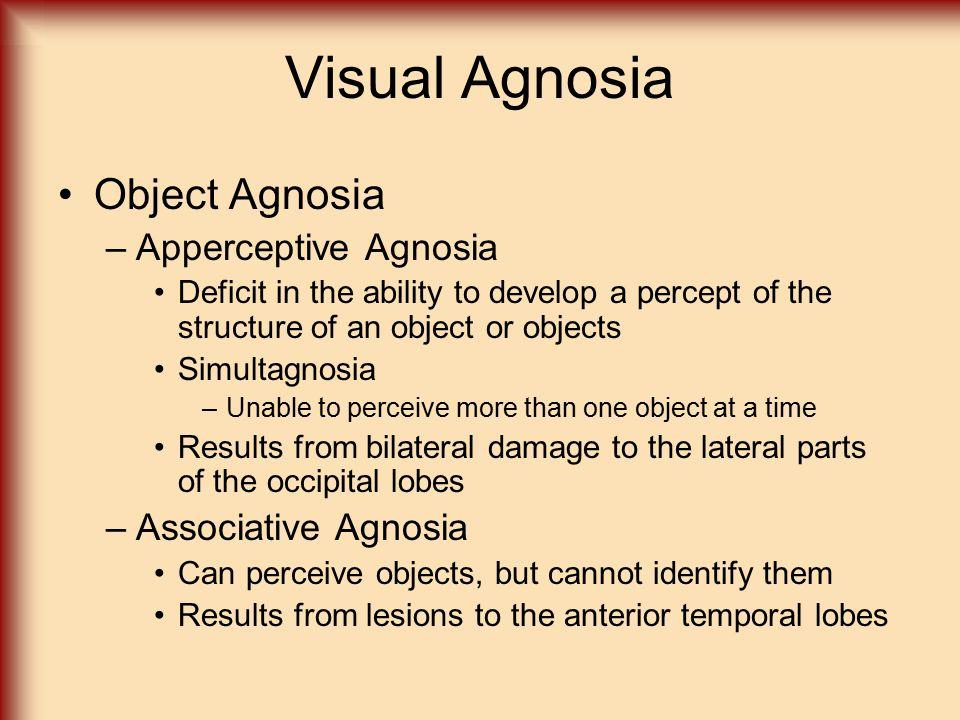 Visual Agnosia Object Agnosia Apperceptive Agnosia Associative Agnosia