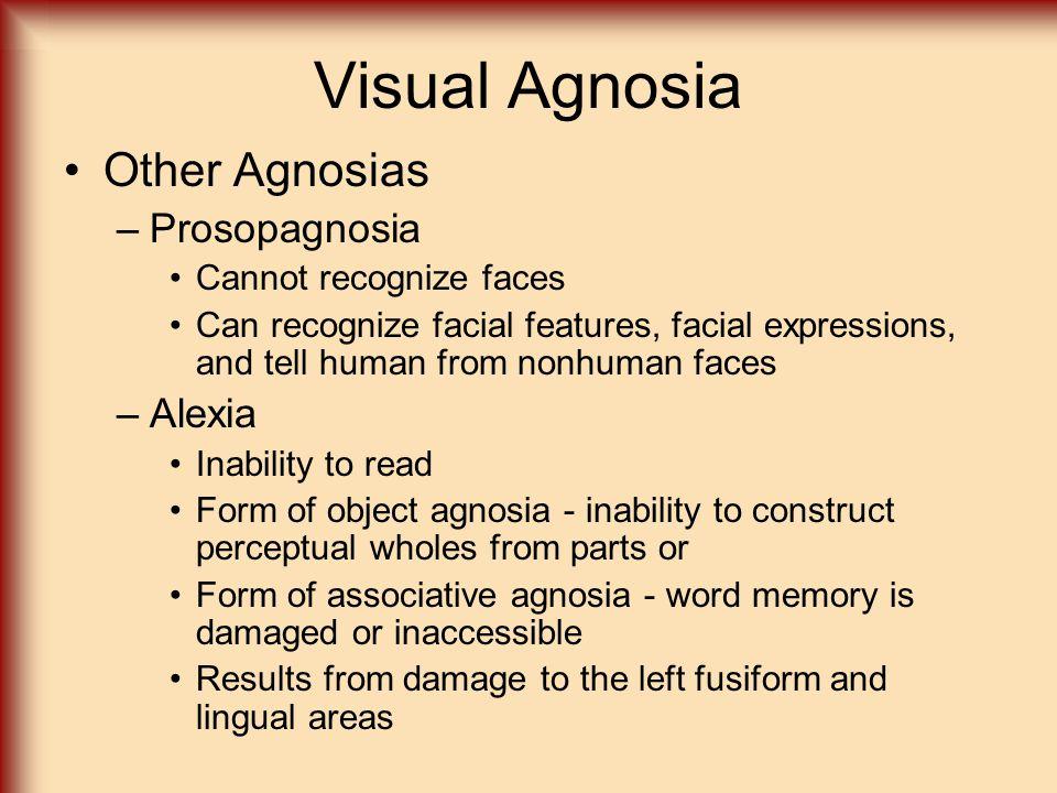Visual Agnosia Other Agnosias Prosopagnosia Alexia