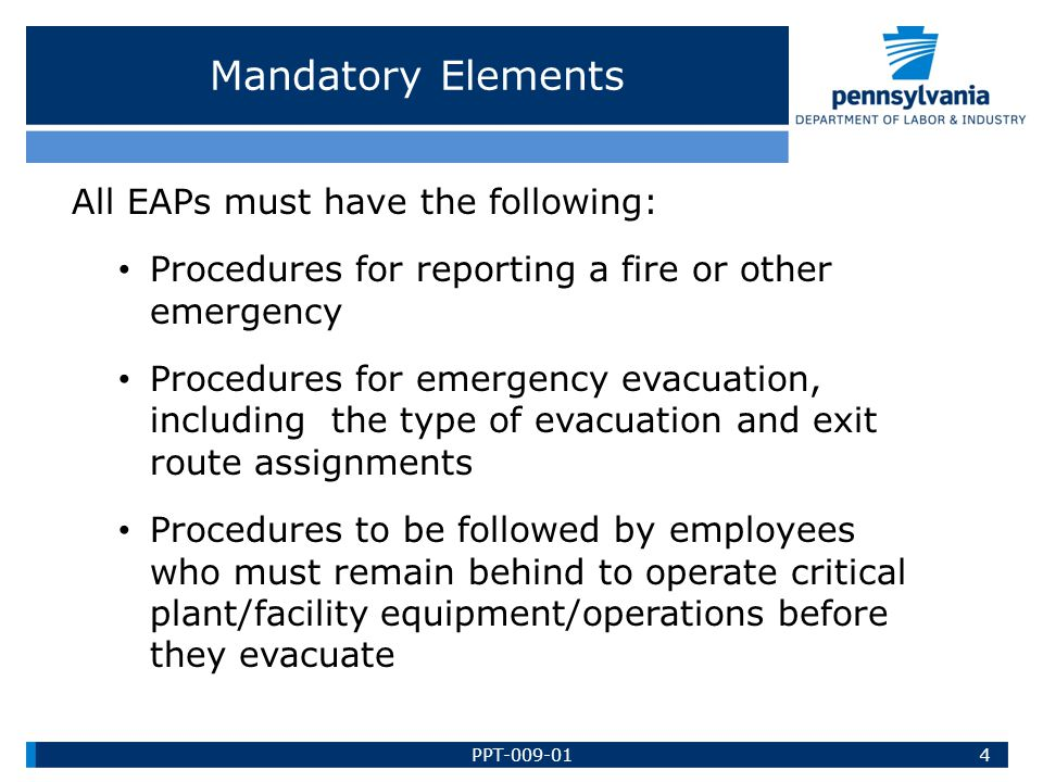 Mandatory Elements All EAPs must have the following: