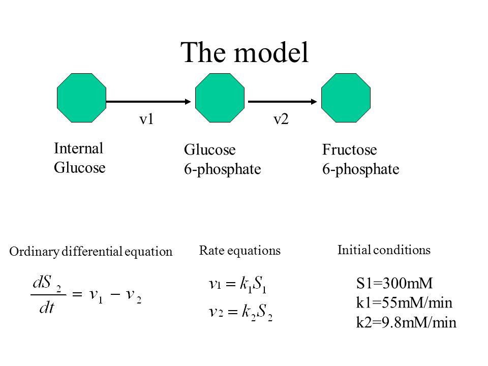 The model Glucose 6-phosphate Fructose v1 v2 Internal S1=300mM