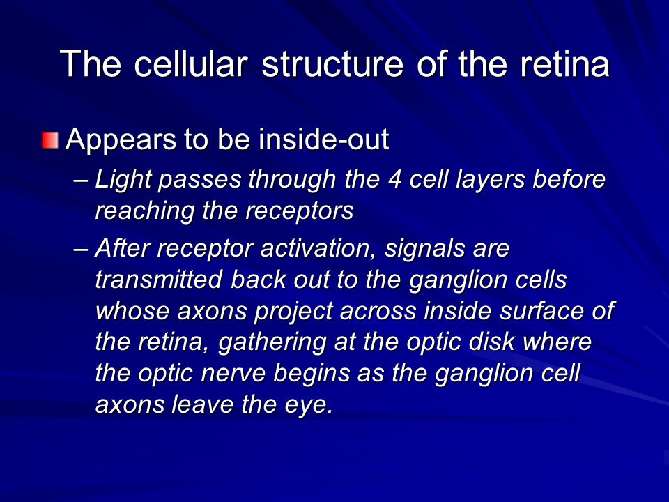 The cellular structure of the retina