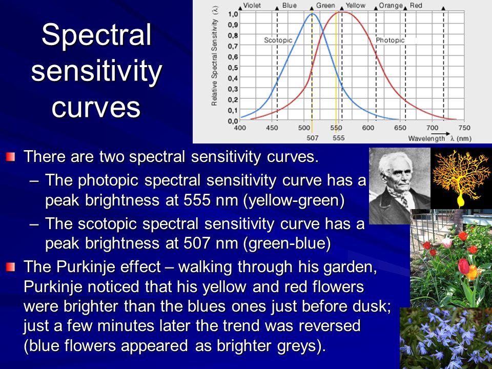 Spectral sensitivity curves