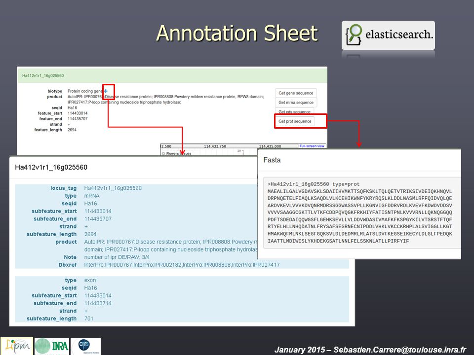 Annotation Sheet The top of the annotation sheet displays structural and automatic fonctionnal annotation data.