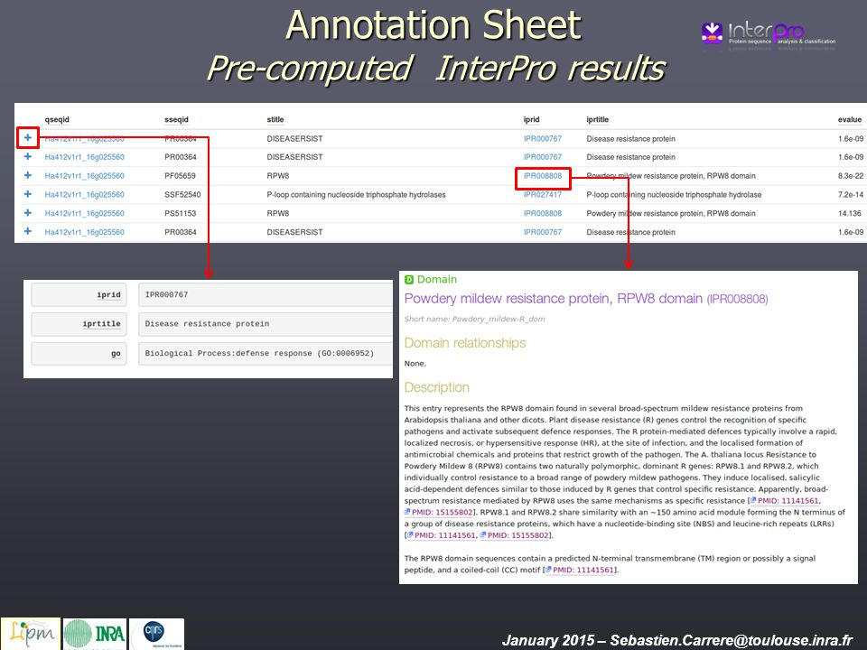 Annotation Sheet Pre-computed InterPro results