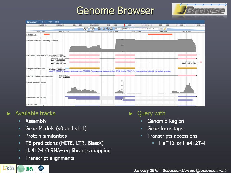 Genome Browser Available tracks Query with Assembly