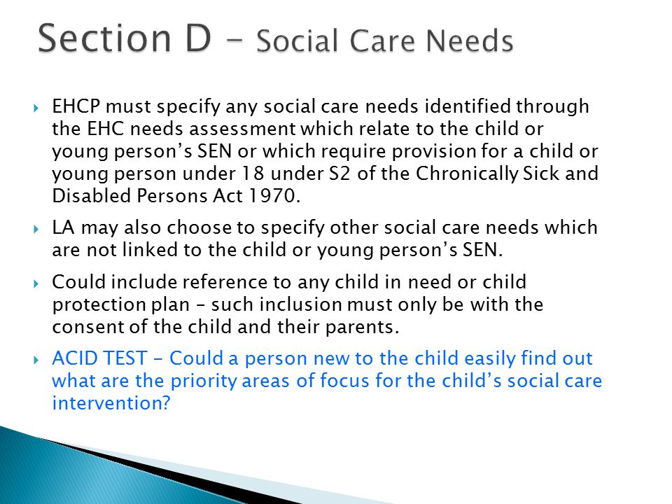 Section D – Social Care Needs