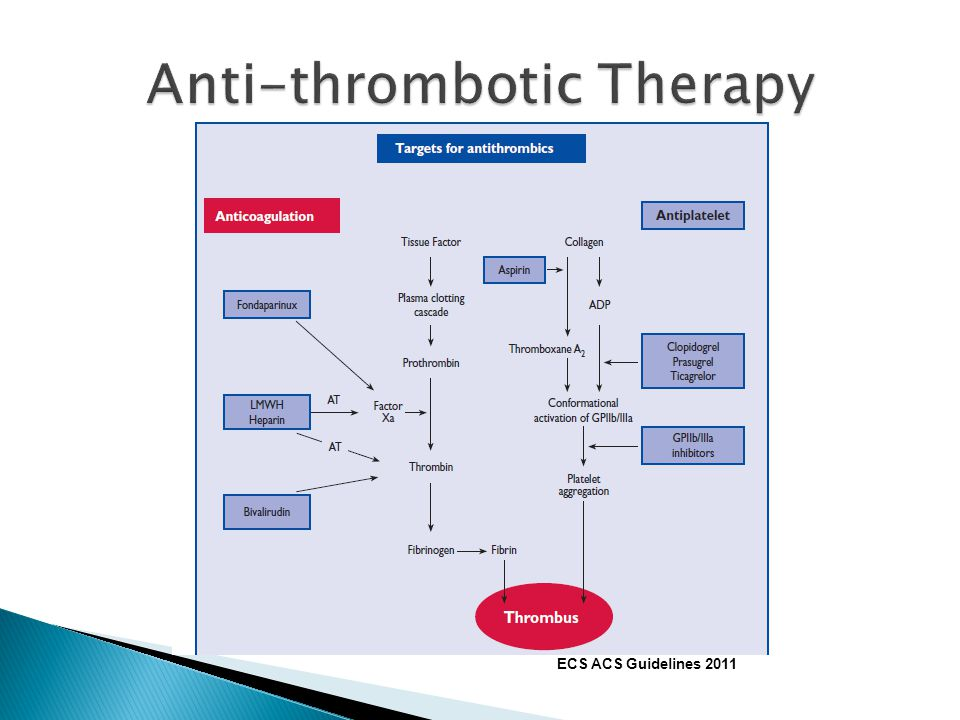 Anti-thrombotic Therapy