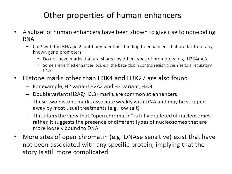 Other properties of human enhancers
