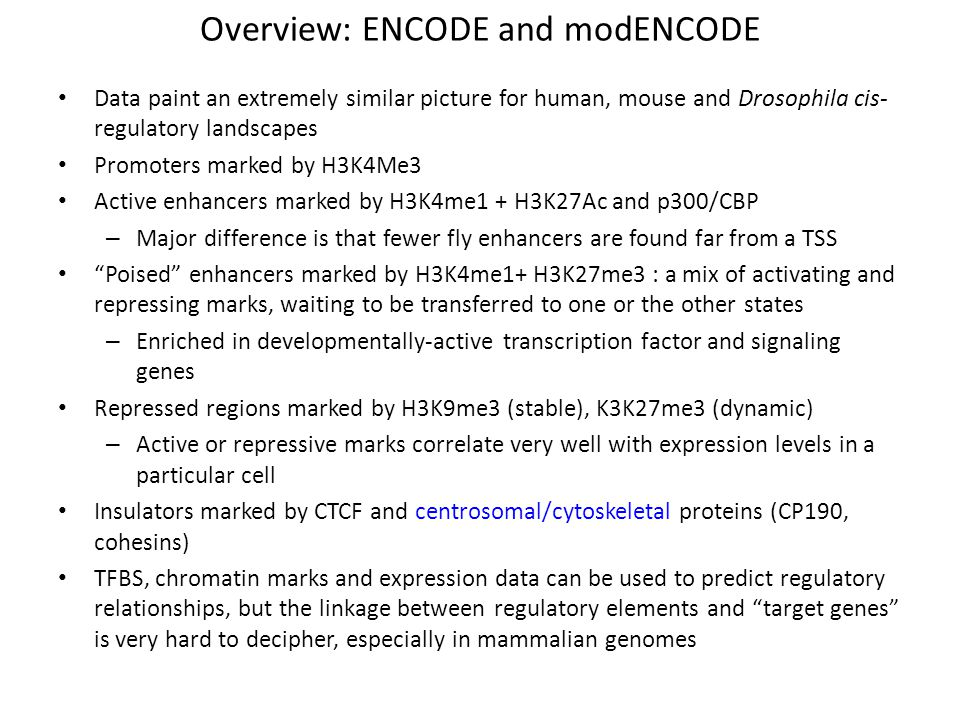 Overview: ENCODE and modENCODE