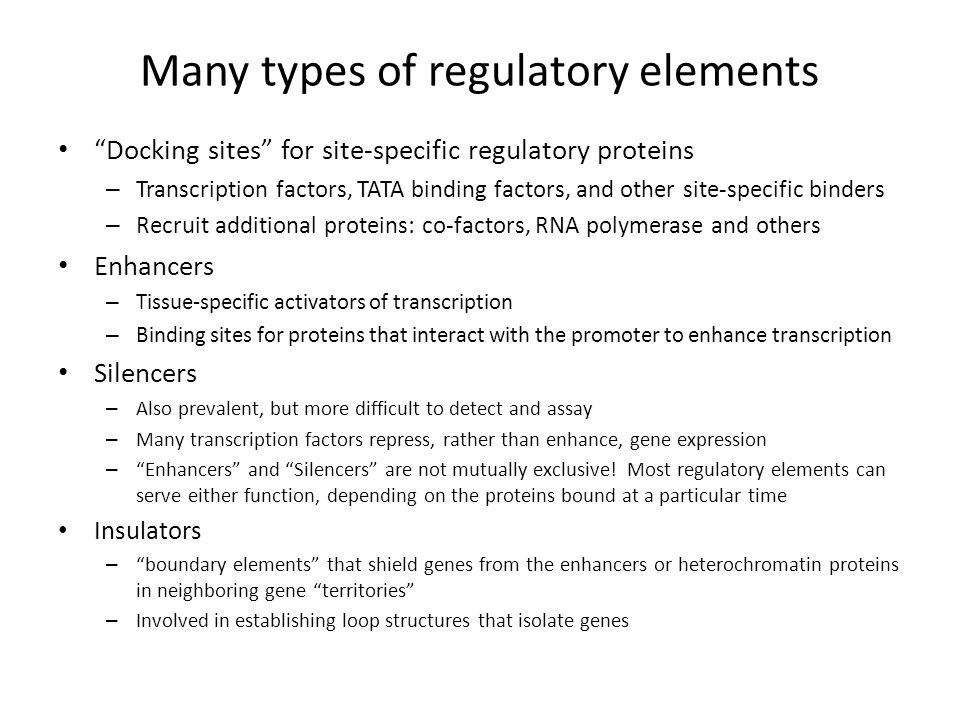 Many types of regulatory elements