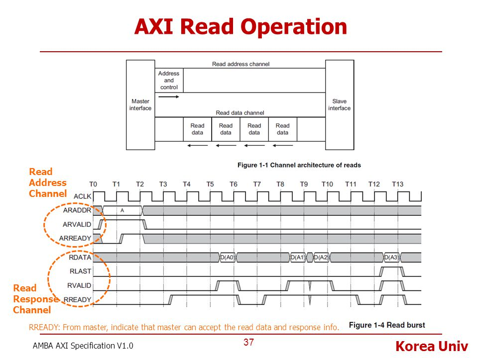 AXI Read Operation Read Address Channel Read Response Channel