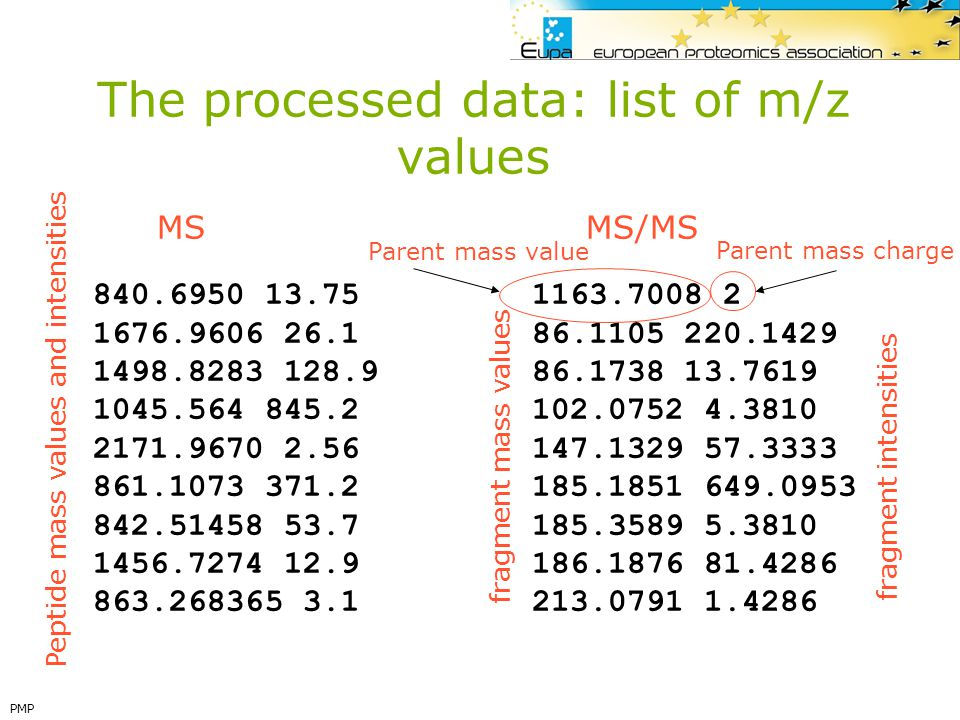 The processed data: list of m/z values
