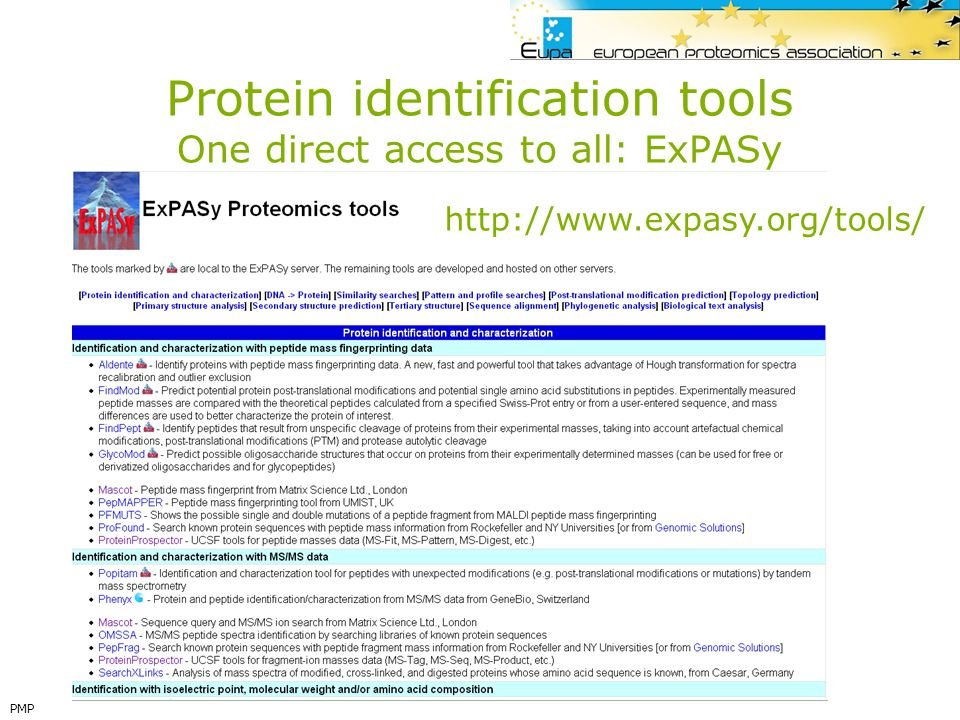 Protein identification tools One direct access to all: ExPASy