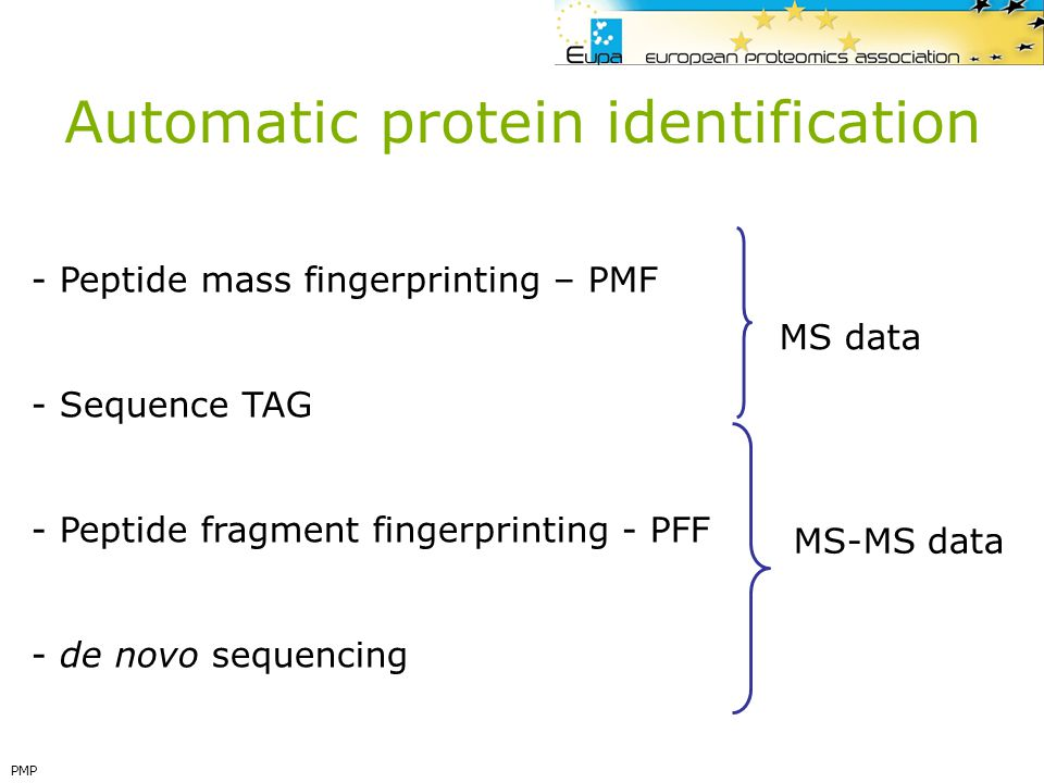 Automatic protein identification