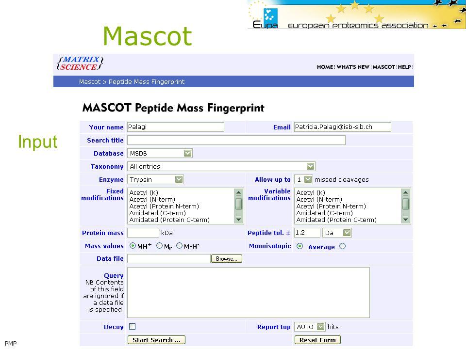 Mascot Input