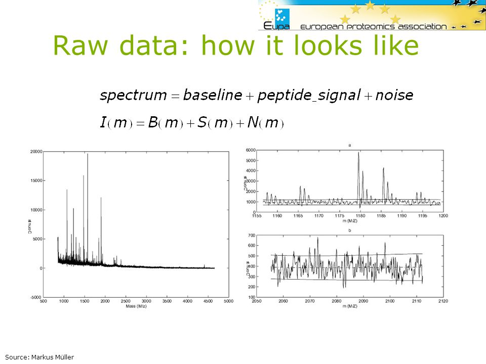 Raw data: how it looks like