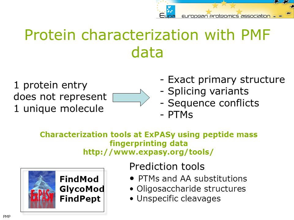 Protein characterization with PMF data